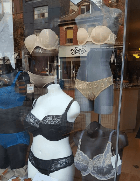 Known as one of Canada's more upscale lingerie stores, La Vie En Rose carries beautifully-made underwear from silk and lace bustiers to naughty nighties and tasteful garter belts.